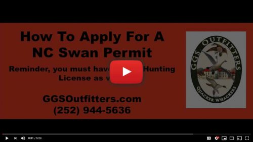How To Apply for a Tundra Swan Hunting Permit